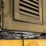What Is Dry Rot