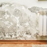 Treating Damp Problems