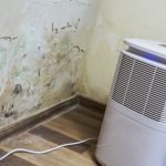 Condensation Could Be In Your Property